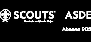 Grupo Scout 905
